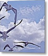 Gulls Will Be Gulls Metal Print
