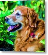 Gus In Flower Bed 10357t2a Metal Print