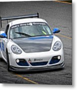 Hairy Dog Garrrage - Porsche - Pit Lane Metal Print