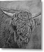 Hairy Highlander Bw Metal Print