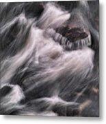 Hairy River II Metal Print