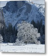 Half Dome In Winter Metal Print