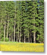 Half Dome Meadow Metal Print
