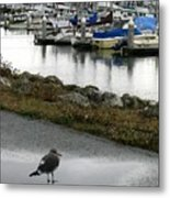Half Moon Bird Metal Print