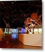 Hall Of Paleontology Metal Print
