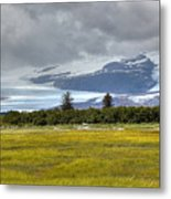 Hallo Glacier And A Bear Metal Print