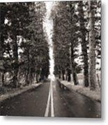Hana Highway Metal Print