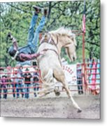 Hang In There Metal Print