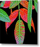 Hanging Green And Red Leafs... Metal Print
