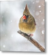 Hanging Out In The Snow Metal Print