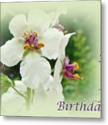 Happy Birthday - Floral - Moth Mullein Metal Print