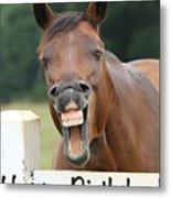 Happy Birthday Smiling Horse Metal Print