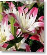 Happy Lilies Metal Print