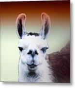 Happy Llama Metal Print