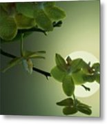 Happy Moon Metal Print