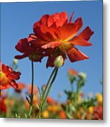 Happy Mother's Day Flowers Metal Print