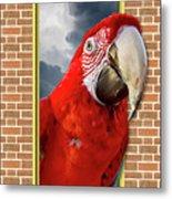 Happy Red Parrot Metal Print