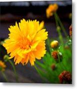 Happy Spring Flower Metal Print