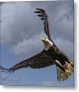 Hard Banking Eagle Metal Print