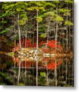 Harold Parker State Park In The Fall Metal Print