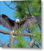 Harriet As I Open Wings Magics Happen Metal Print