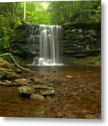 Harrison Wrights Falls In The Forest Metal Print