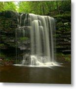 Harrison Wrights Forest Falls Metal Print