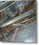Harrisson Driftwood Metal Print