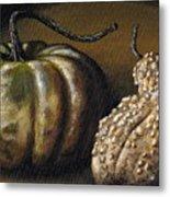 Harvest Gourds Metal Print