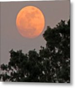 Harvest Moonrise Metal Print
