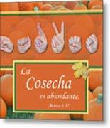 Harvest Spanish Metal Print