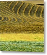 Harvested Fields Of The Palouse Metal Print