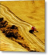 Harvesting The Crop Metal Print
