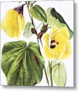 Hau Flower Art Metal Print