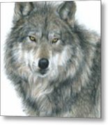 Haunting Eyes Metal Print
