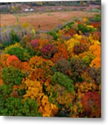 Havenwoods State Forest Metal Print