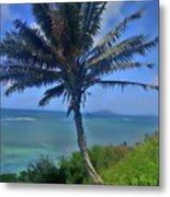 Hawaii Palm Metal Print