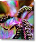 Hawaii Plants And Flowers - Tropics Metal Print