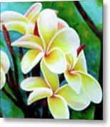 Hawaii Tropical Plumeria Flower #225 Metal Print