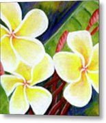 Hawaii Tropical Plumeria Flower #298, Metal Print