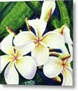 Hawaii Tropical Plumeria Flowers #160 Metal Print