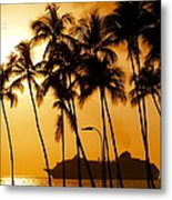 Hawaiian  Cruise Metal Print