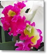 Hawaiian Orchid 10 Metal Print