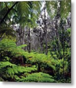 Hawaiian Rainforest Metal Print