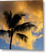 Hawaiian Sunset Hanalei Bay 5  Metal Print