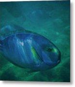 Hawaiian Tang Fish Metal Print