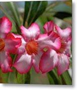 Hawaiian Flowers Metal Print
