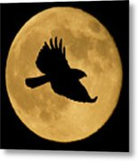 Hawk Flying By Full Moon Metal Print