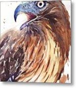 Hawk Watercolor Metal Print