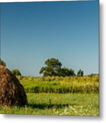 Hay Bale On A Rural Field Metal Print